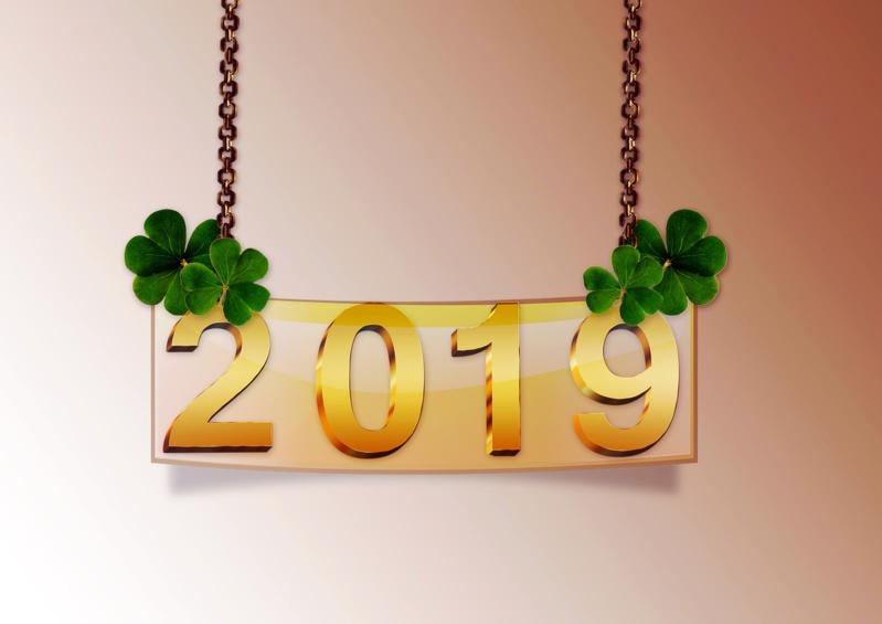 Vœux pour l'année 2019