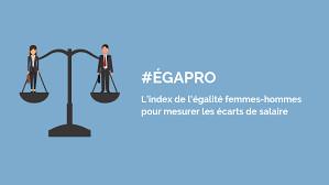 Index de l'égalité professionnelle  : Entreprise de plus de 250 salariés