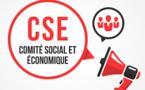 Les nouveaux CSE : la mise en place, un état des lieux inattendus…