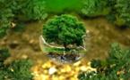 CSE : nouvelles attributions environnementales